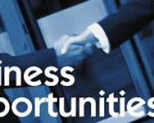 Igniting Business in Queens – Business/ Networking Luncheon